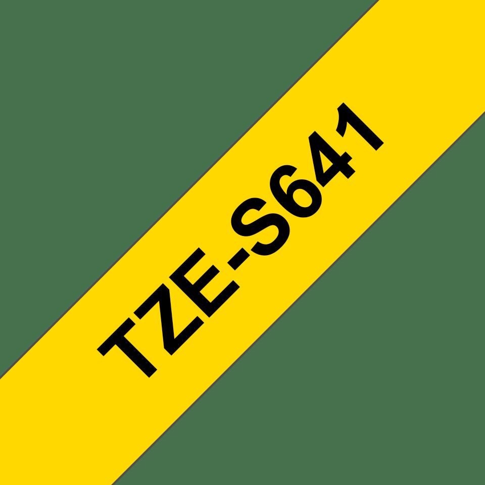 TZeS641_main