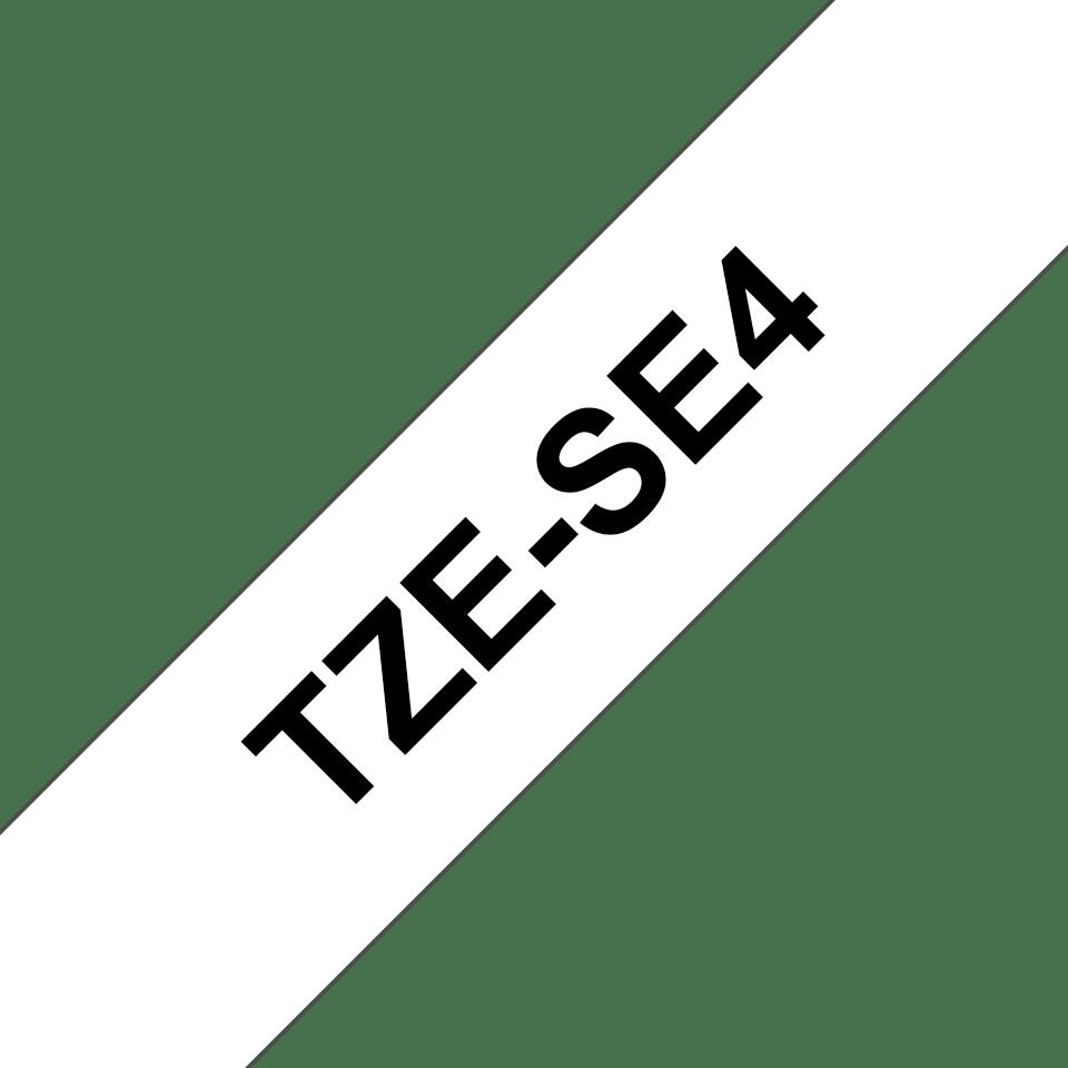 TZeSE4_main