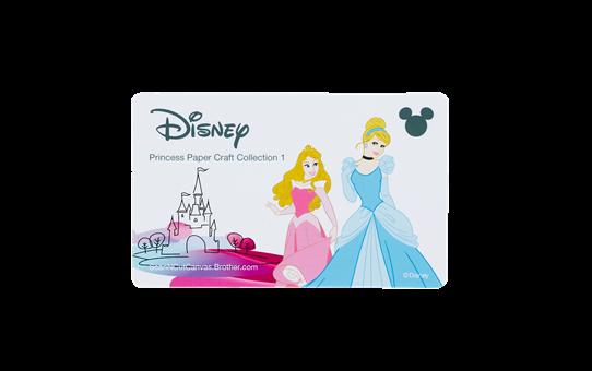 Collezione di disegni Principesse Disney CADSNP02