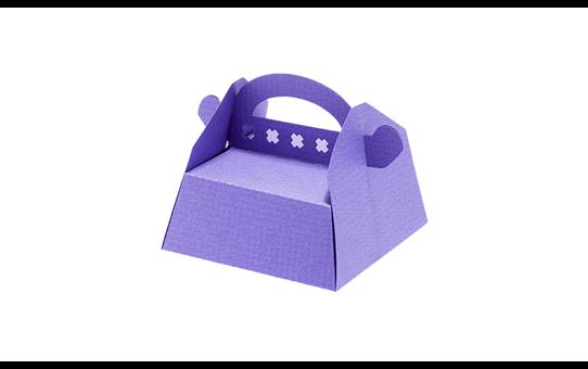 CAPPNP02 Collection de boîtes 29