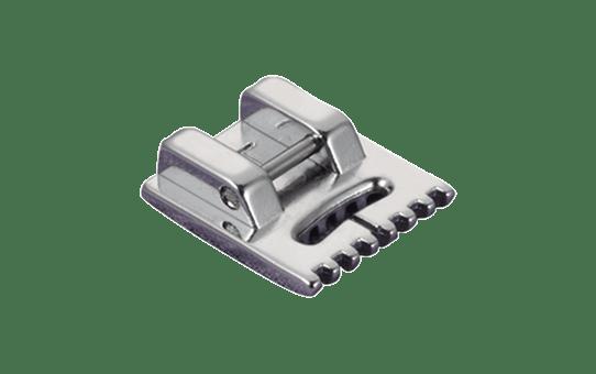 Biesenfuß F058 2