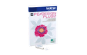 PE-Design Plus2 Software per ricamo