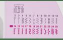 XN2500 naaimachine 7