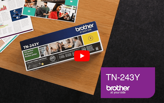 Brother TN243Y toner jaune - rendement standard 5